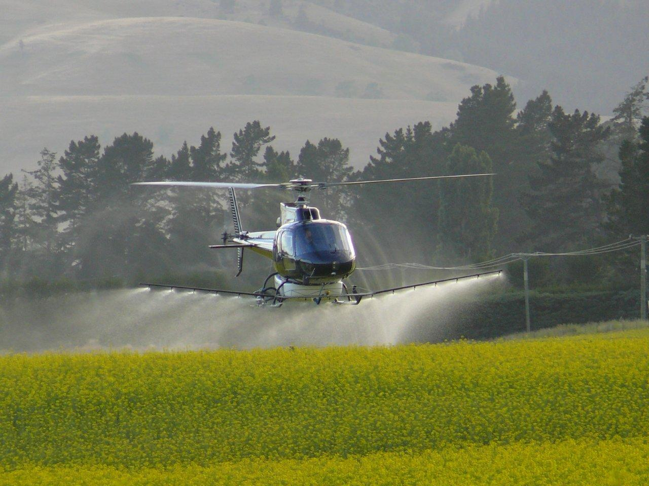 helicopter crop spraying with Weed Control Idl 1 Idt 3957 Id 22772 on New Report Says Global Gmo Crop Cultivation Is Declining Worldwide Most Production  es From Just Six Countries as well Watch additionally Stock Photo Helicopter Spraying Maturing Potato Crop With Trace Elements And A 7513039 also Japan Made Variant Series Helicopter further Stock Photo Retired Old Crop Dusting Helicopter Image30018420.